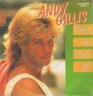 ANDY-GILLIS-HEY-IK-MIS-JE